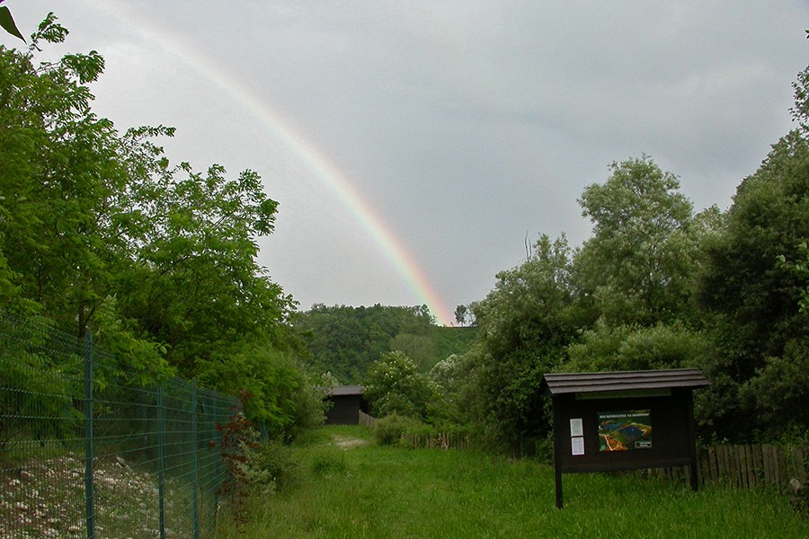 Arcobaleno all'Oasi